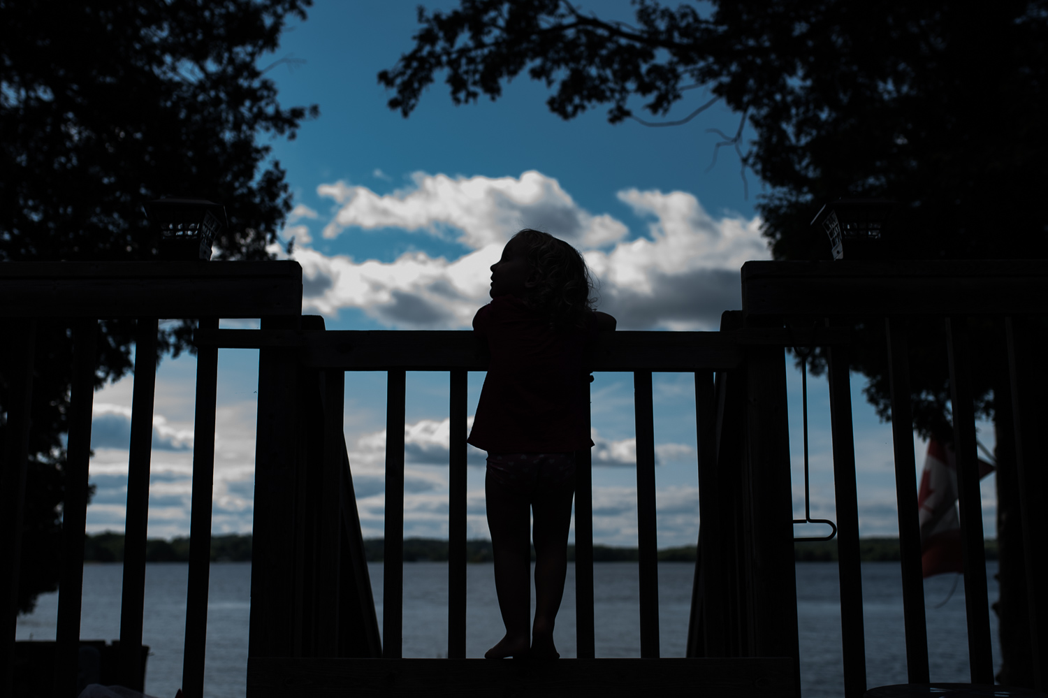 Toddler girl silhouetted against a gate framed by silhouetted trees and a bright blue sky with white fluffy clouds.