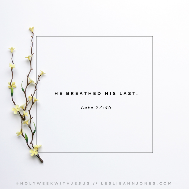 Free Holy Week Bible reading guide and daily reflections from Leslie Ann Jones.