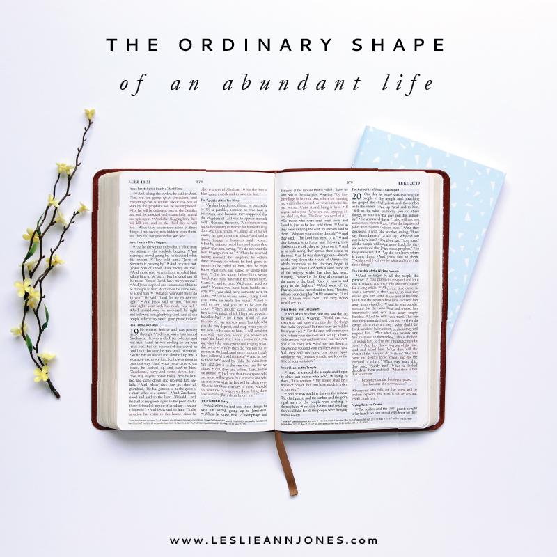 The Ordinary Shape of an Abundant Life by Leslie Ann Jones