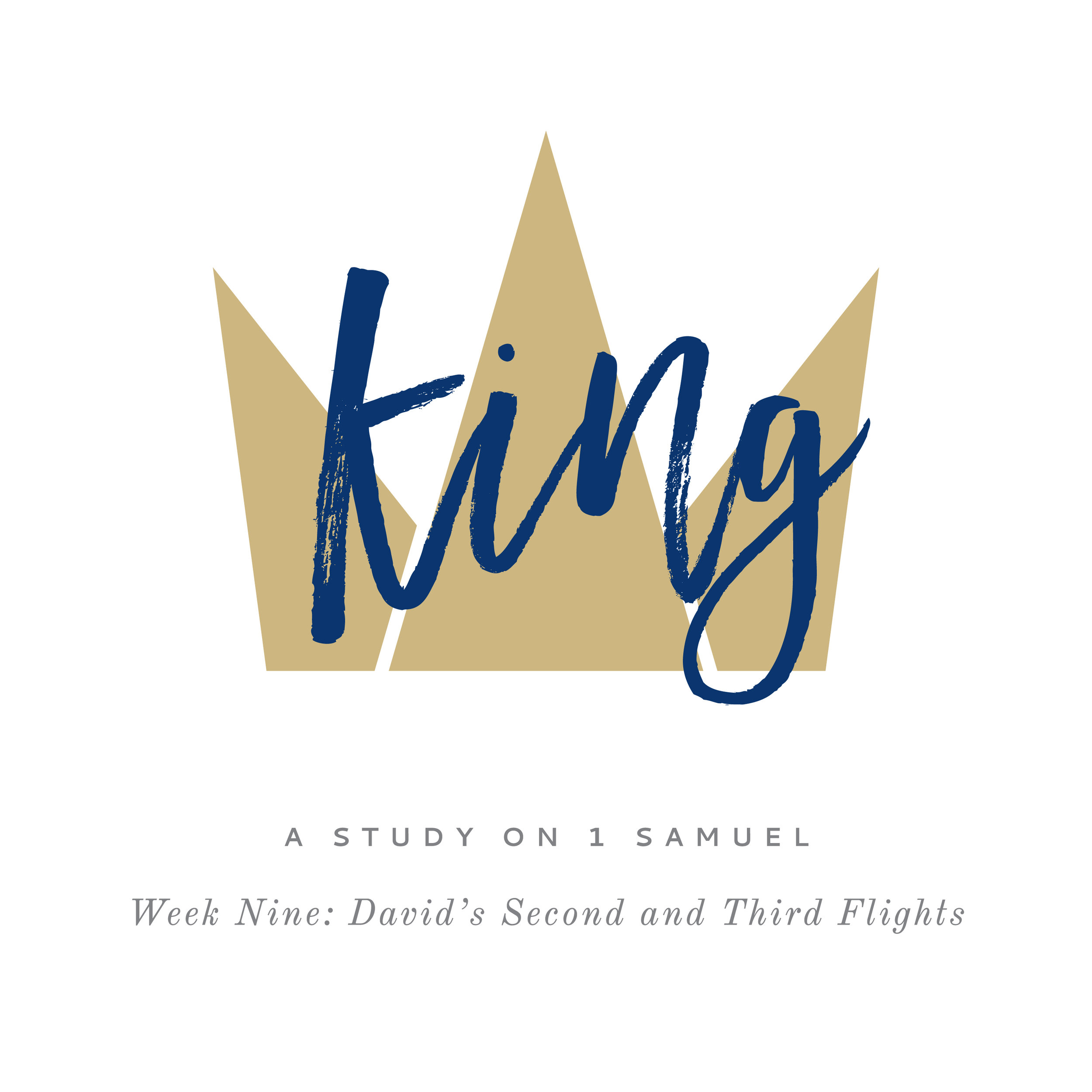 King (1 Samuel) Week 9: David's Second and Third Flights