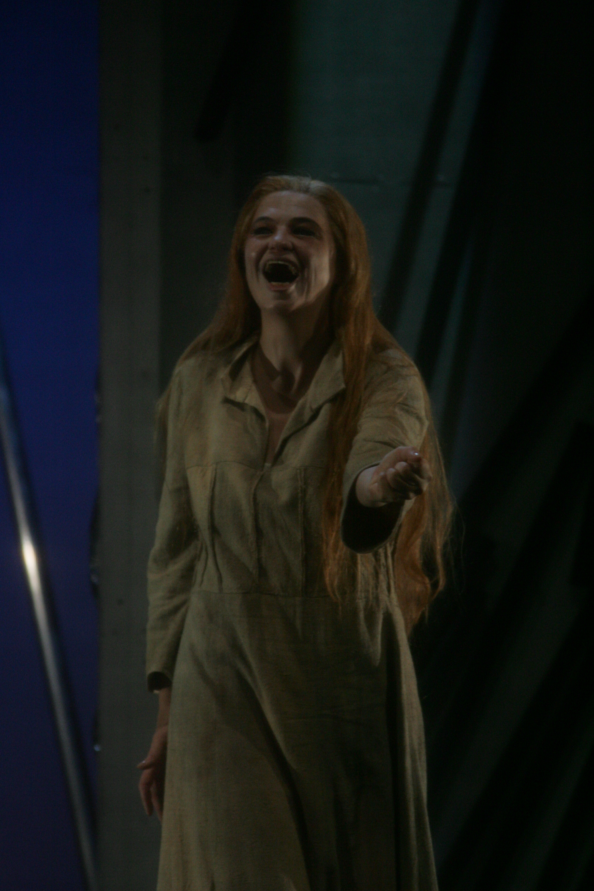 Vera Wenkert as Walkyre