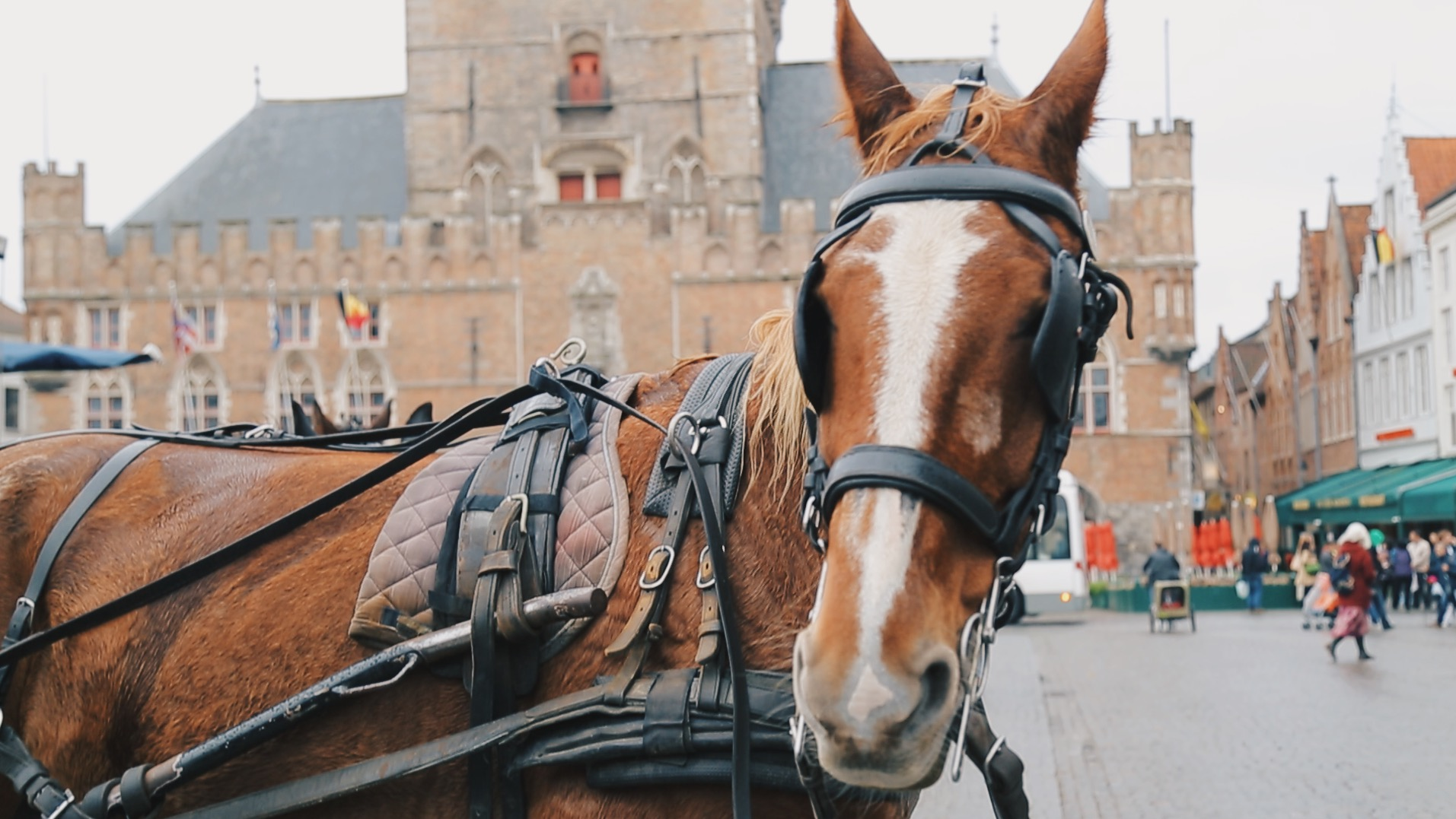 bruges horse markt square