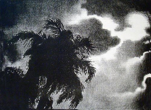 Ann Chernow  Dark Palms , 2012 one stone lithograph 11 x 14 inches