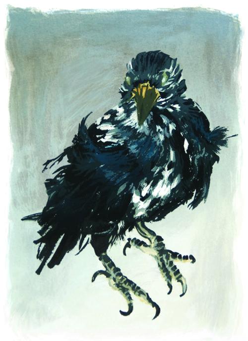 Nancy McIntyre  Old Crow III , 2008 Silkscreen 8.75 x 6.25 inches