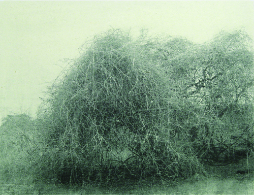Kent T. Rush  No title (name: chapel) , 2009 Collotype with chine collé 8 x 10 inches