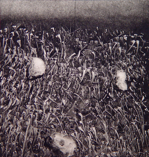 Phillip Michael Hook  Imagined Microscopy 001 , 2007 monotype 5 ¼ x 5 ¾ inches
