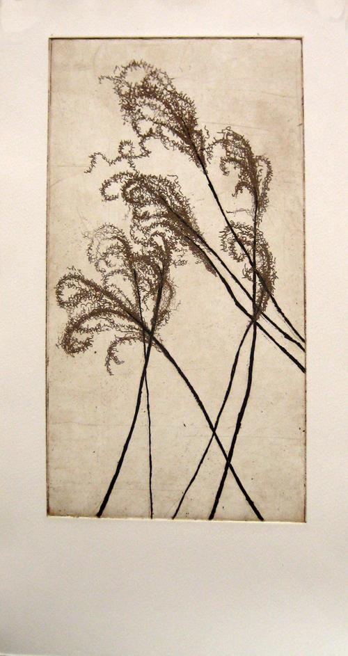 Andrea Mar  Untitled , 2007 intaglio 16 ½ x 9 inches