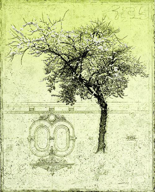 David Smith-Harrison  Plum Tree III , 2004 Intaglio