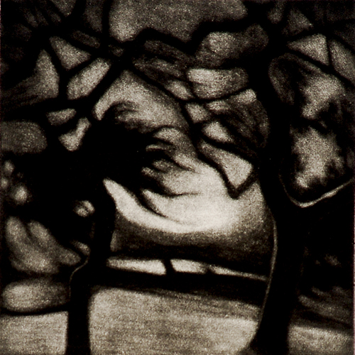 Anita S.Hunt  Nightmare Trees  Mezzotint Darkness is the context of most of my work. I am interested in situations where light reveals only certain aspects of a scene. In low light, much remains obscure and what is perceived is ambiguous. The nature of things is brought into question. -Anita S. Hunt
