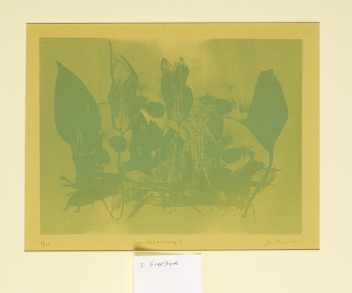 Jenny Freestone  Siemriep, Hommage F  Lithograph