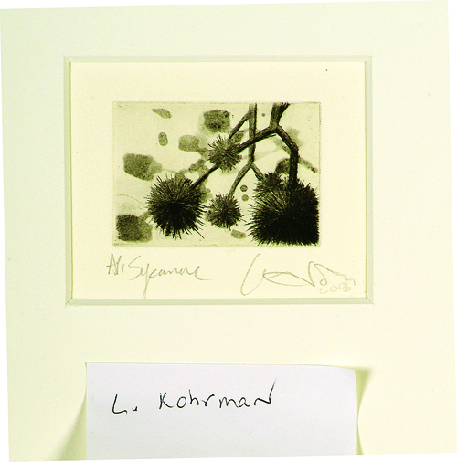 Louise Kohrman  Sycamore  Drypoint, spit-bite etching