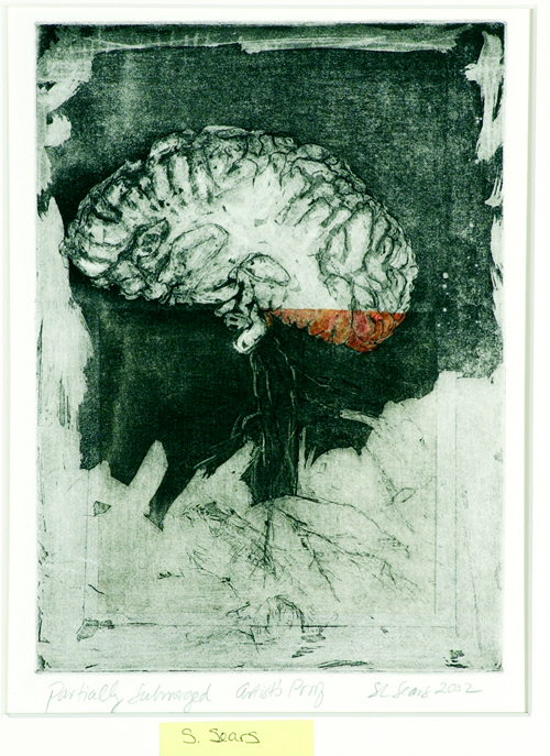 Sarah Sears  Partially Submerged  Intaglio, hand coloring, chine colle