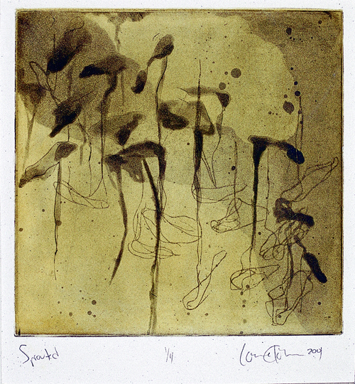 Louise Khorman  Sprouted  Etching