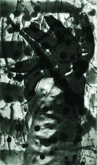 Saritha Margon  Black Glove  photogravure, Spit bite