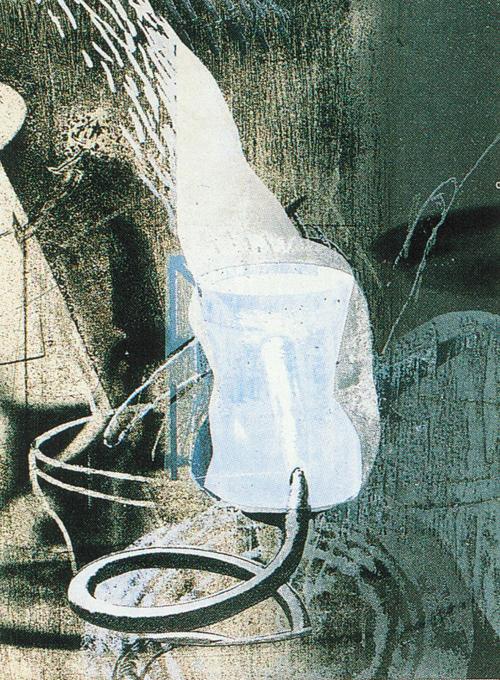 Sean Caulfield  Blood Garden  etching, lithograph, screen print