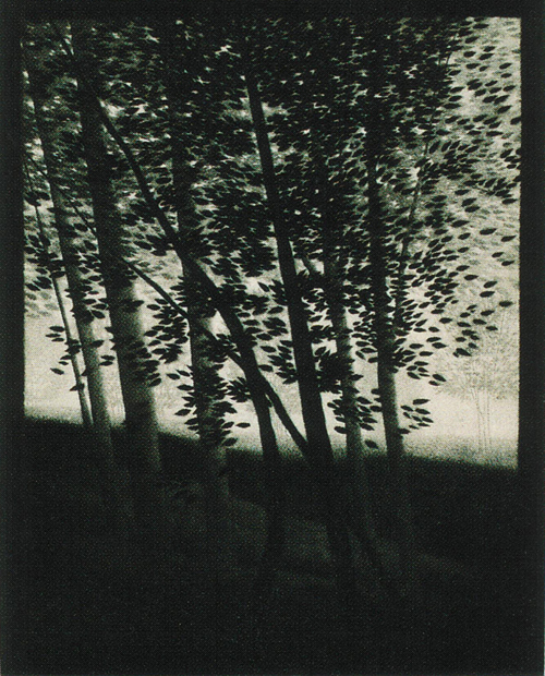 Robert Kipness  Hillside Shadows  mezzotint