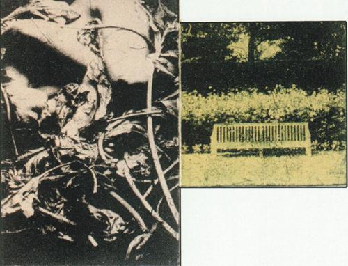 David Conn  Damascus No. III  etching, collé