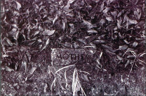 Piero Trimarchi  Mother  gelatin silver print