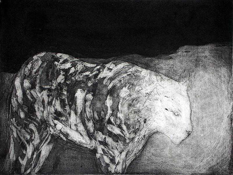 Sarah Sears   Tiger, Tiger , 2015 intaglio 9 x 12 inches