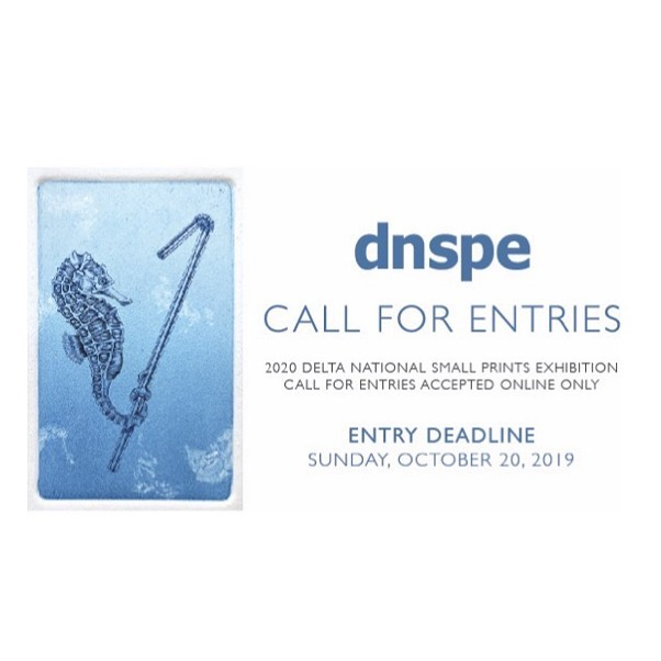 The deadline to submit your work for a chance to be accepted into the 2020 DNSPE is two weeks from today! Click the link in our bio to enter or for more info!
