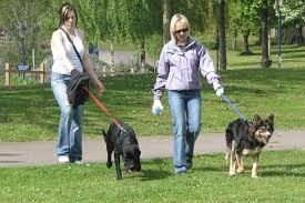 dogs women 2.jpg