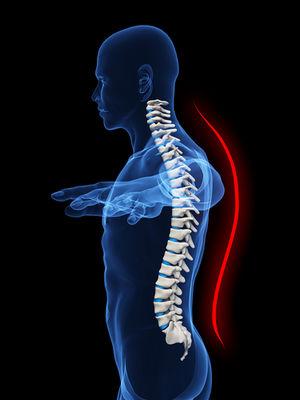 spine alignment.jpg