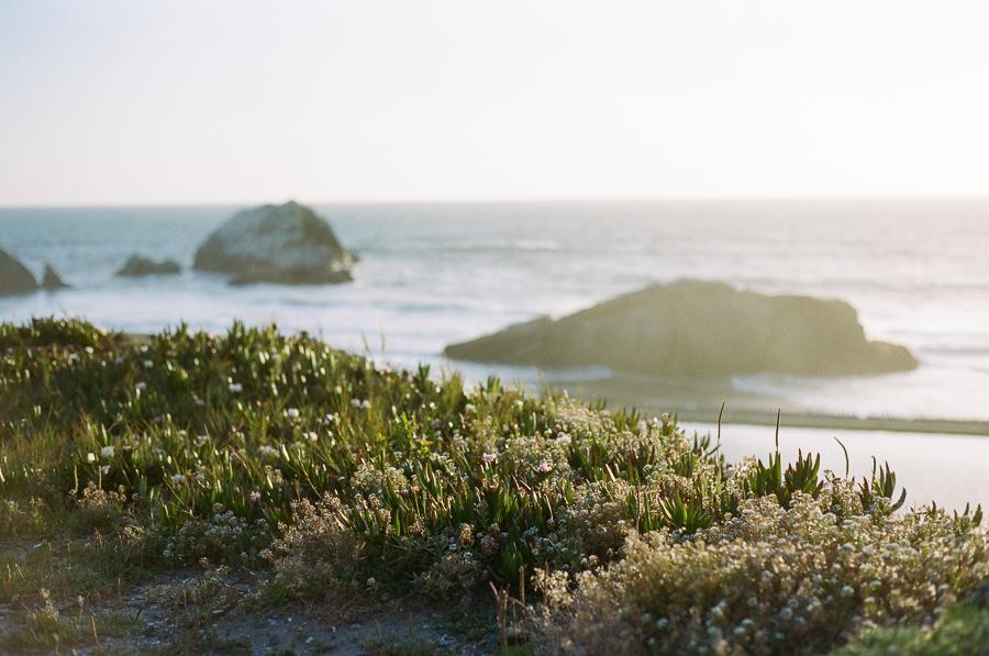 on-the-coast-1