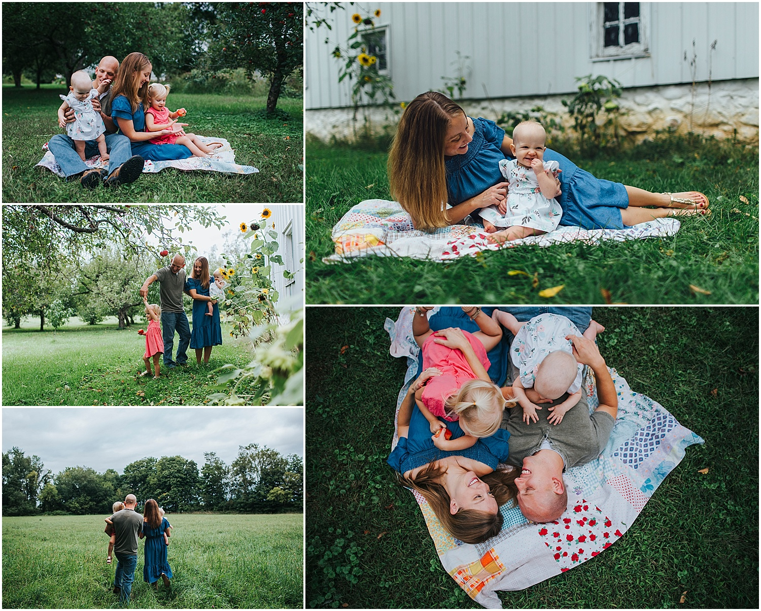 cozy fall family photos by old barn and in field