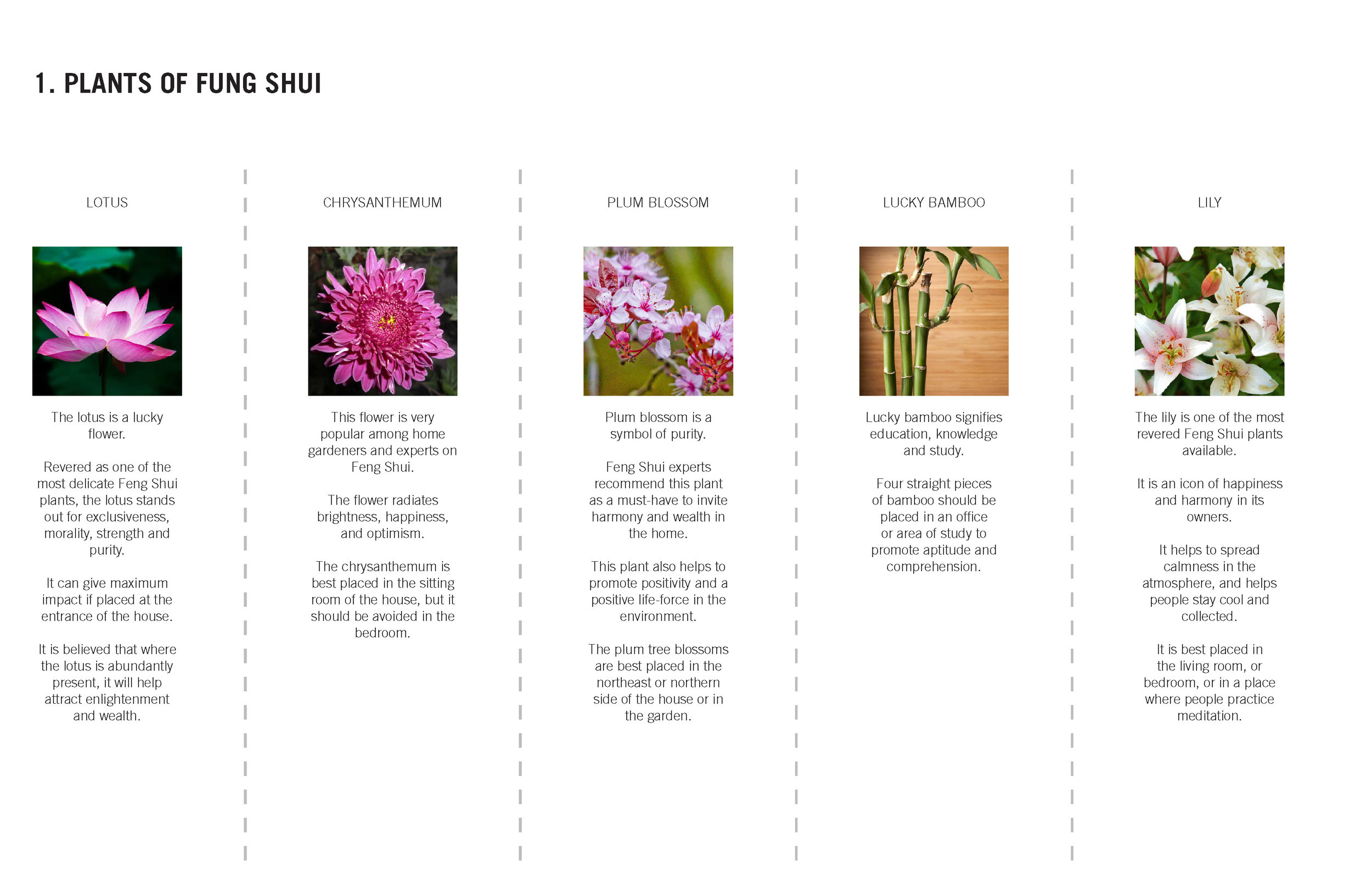 SCA-170503-FENG SHUI GUIDE_Page_0909.jpg