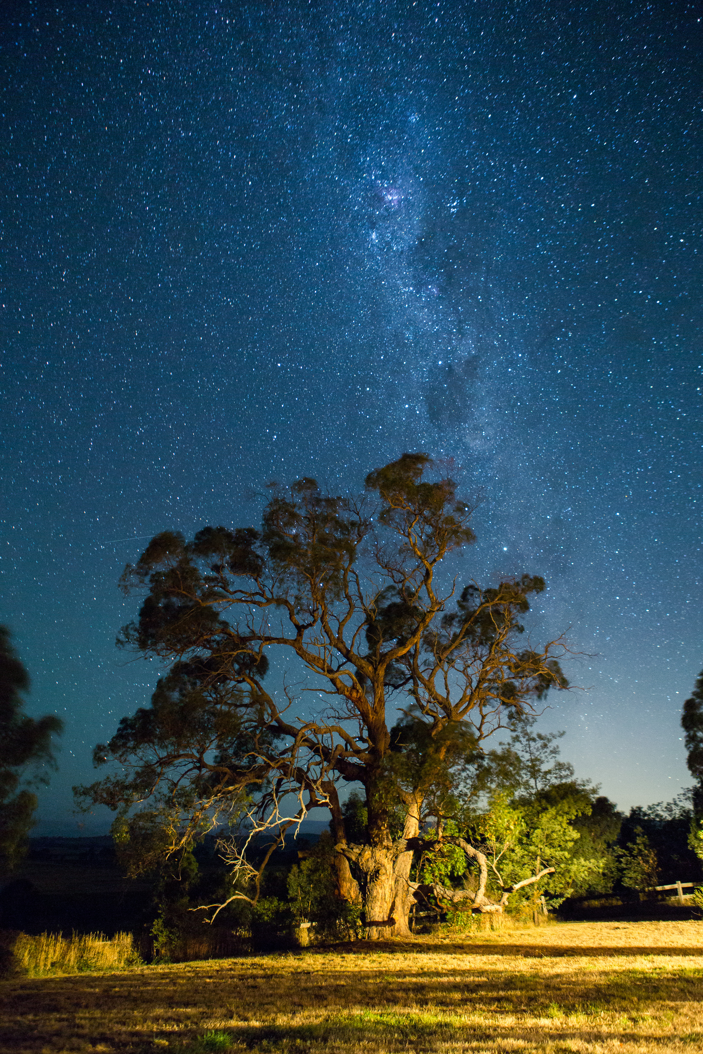 The view from the porch. The glow from Melbourne is in the lower right.
