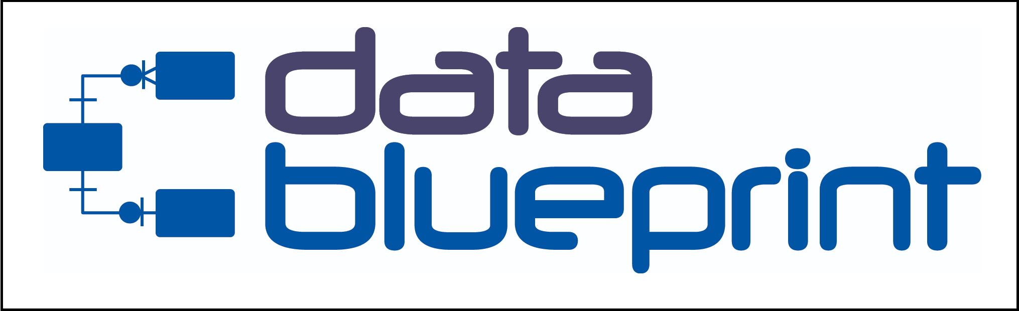 data blueprint.png