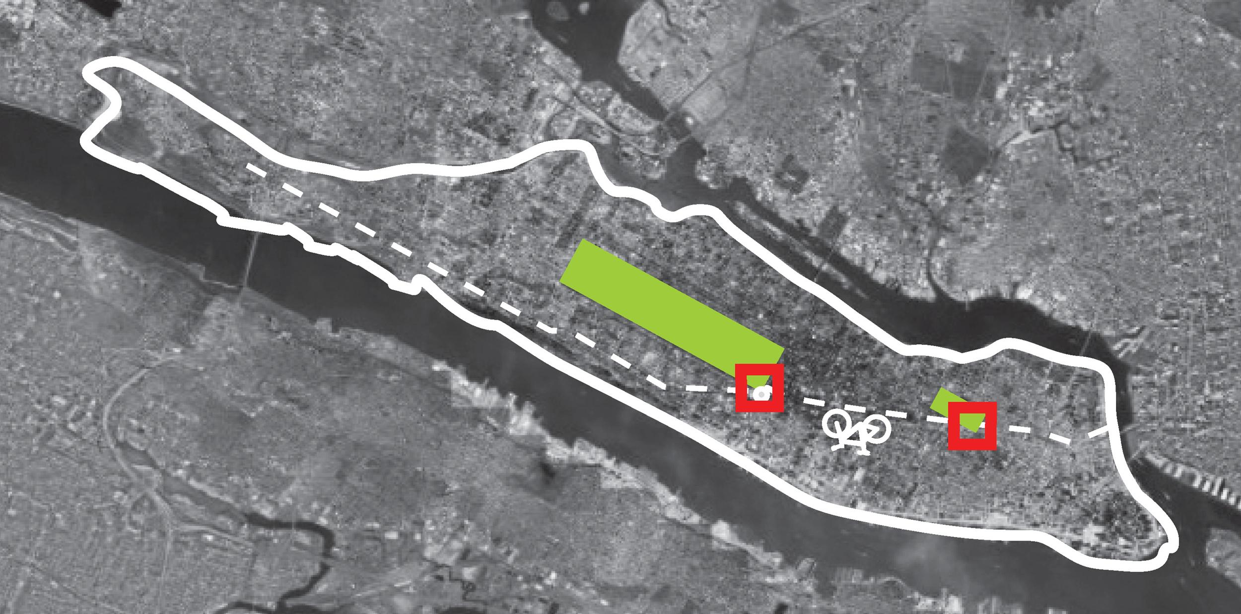 BicycleTree_Manhattan_White.jpg