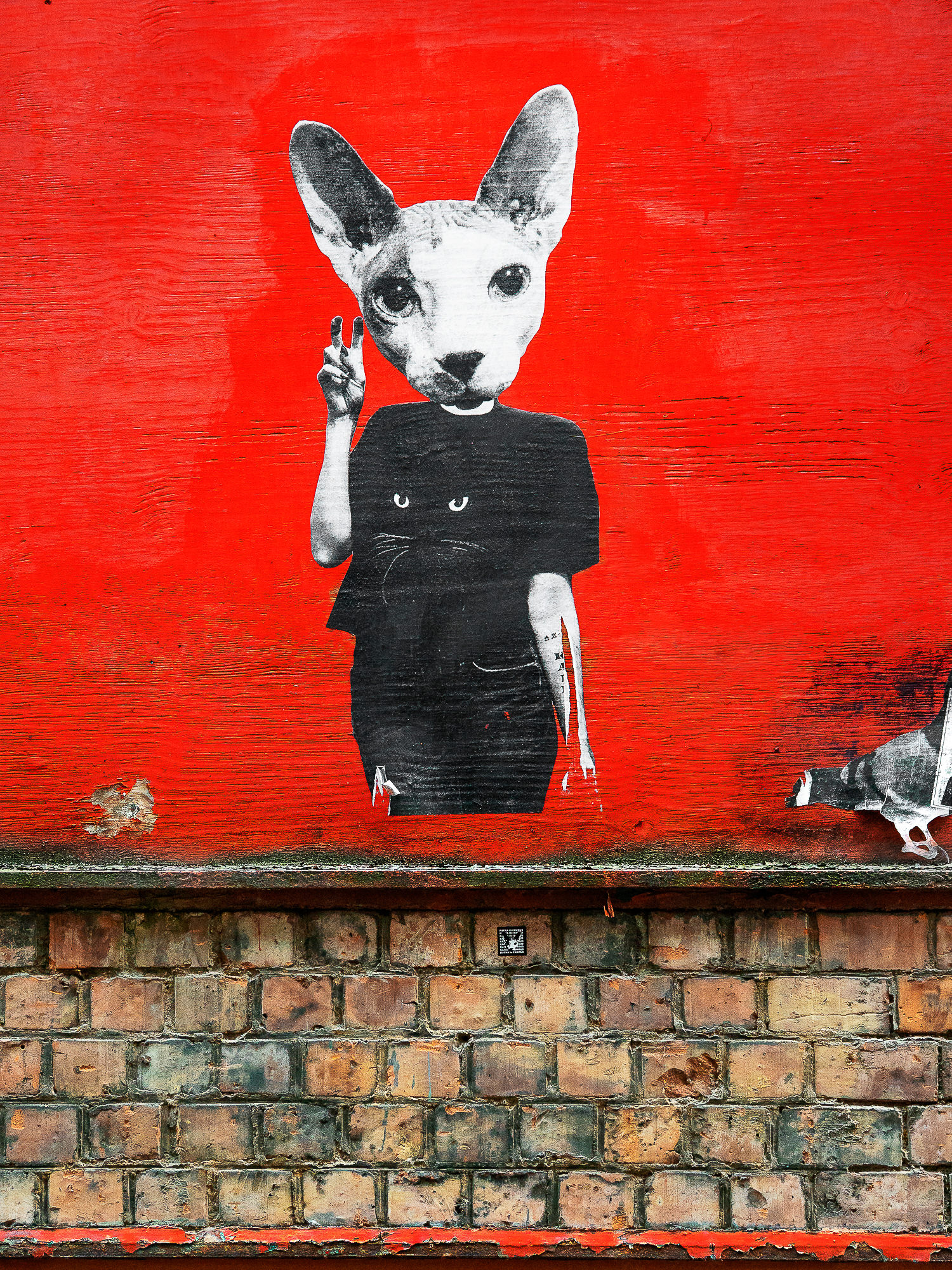 graffiti street art - Manchester UK