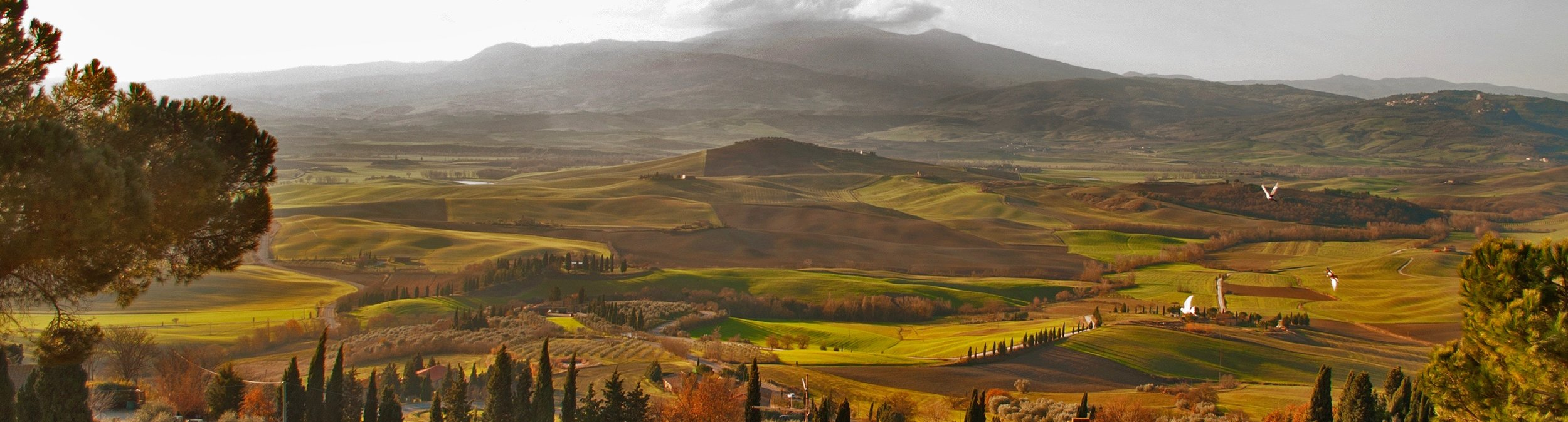 Linnell Pienza panorama.jpg