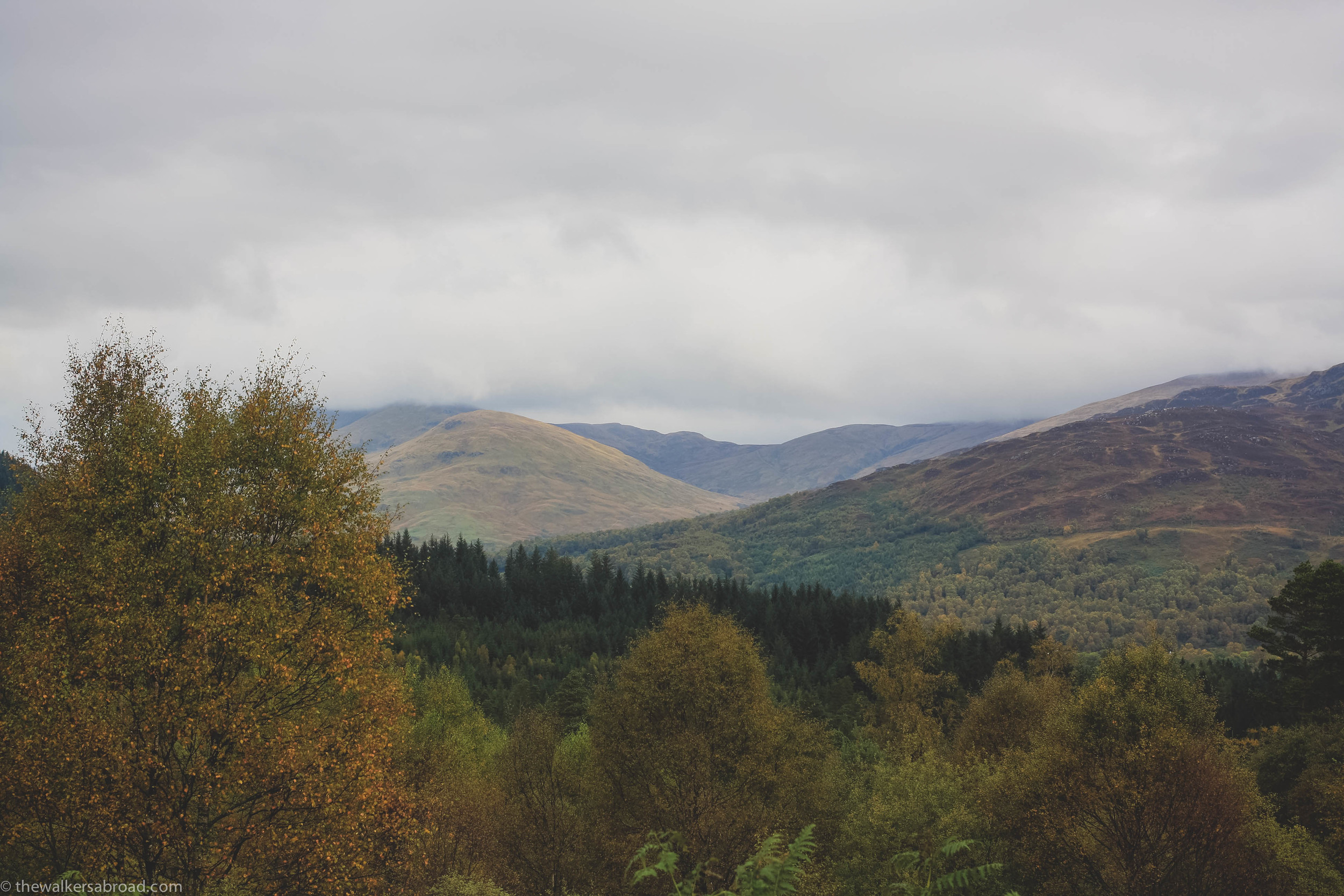 Views from a lookout in the Trossachs. (Possibly on the Duke's Pass again?)