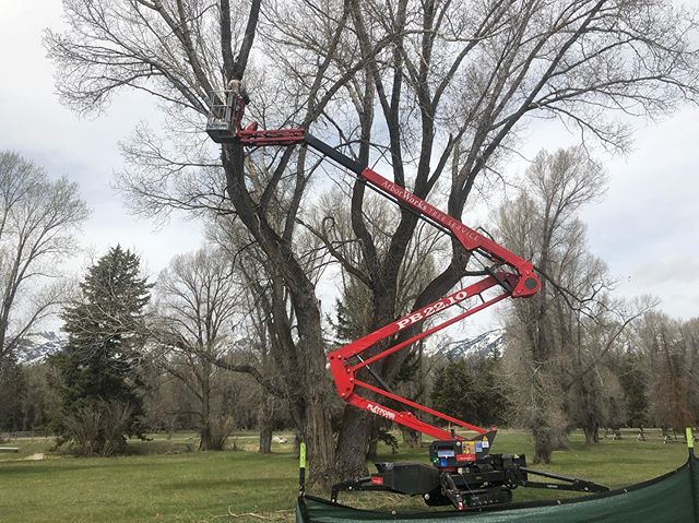 Sometimes you need mobility  #mobilelift  #jharborworks  #arborist  #treework