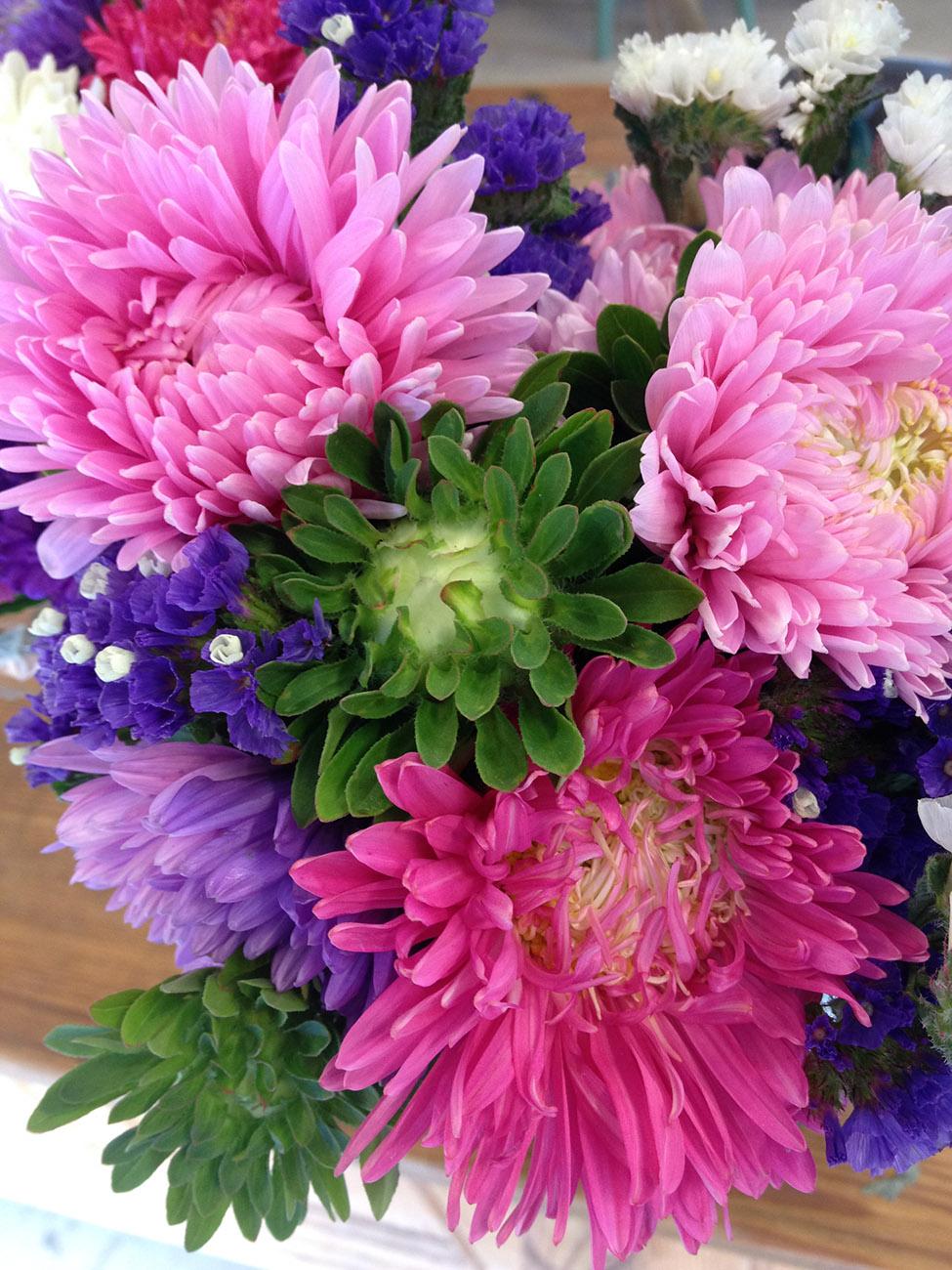 blomster03_nett.jpg