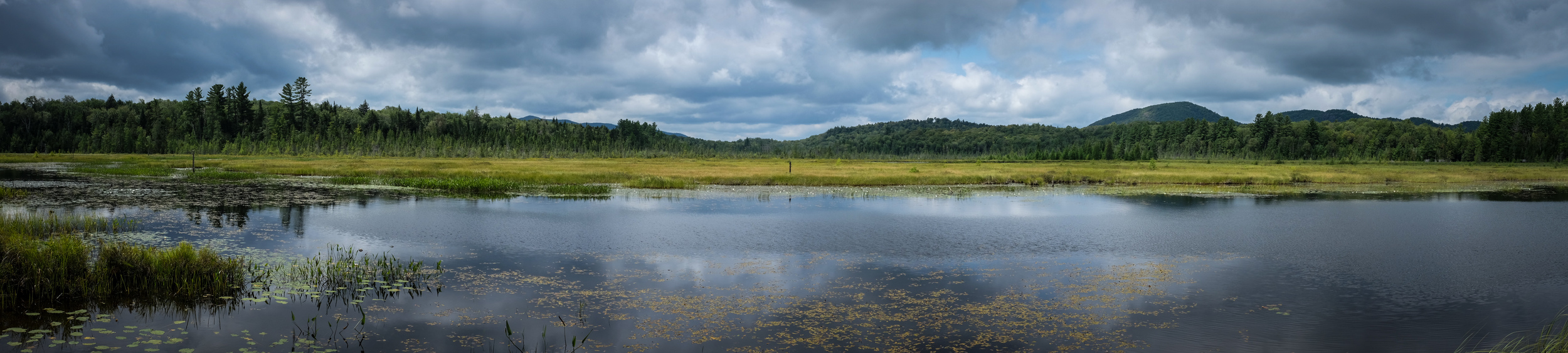 Panoramic view of Heron Marsh located at the Paul Smith's College Visitor Interpretive Center. I'm sure this would be spectacular with early morning or late afternoon light, but the X100S did just fine at noon. 1/850 @ f8, ISO 400.