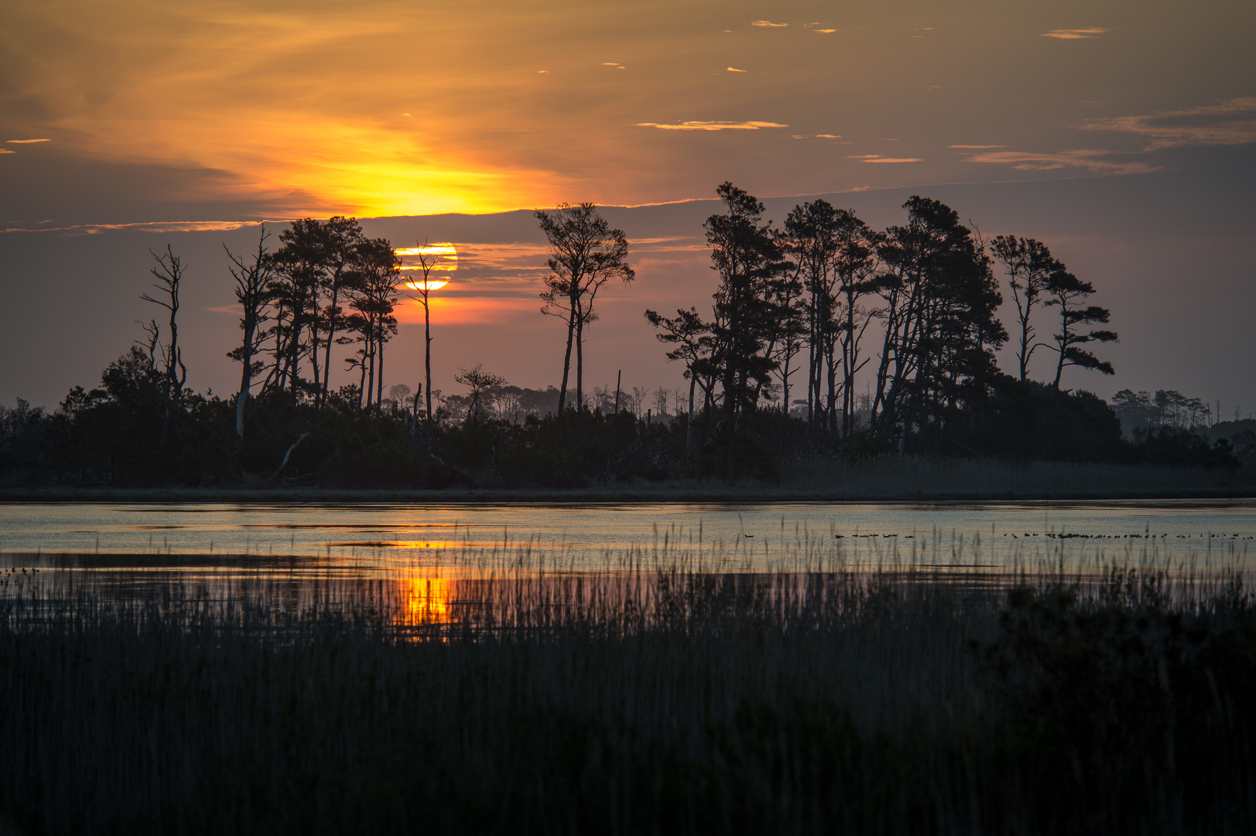 Chincoteague sunrise. 1/640 @ f5.3, ISO 200. Nikon D4S, 80-400mm at 195mm.