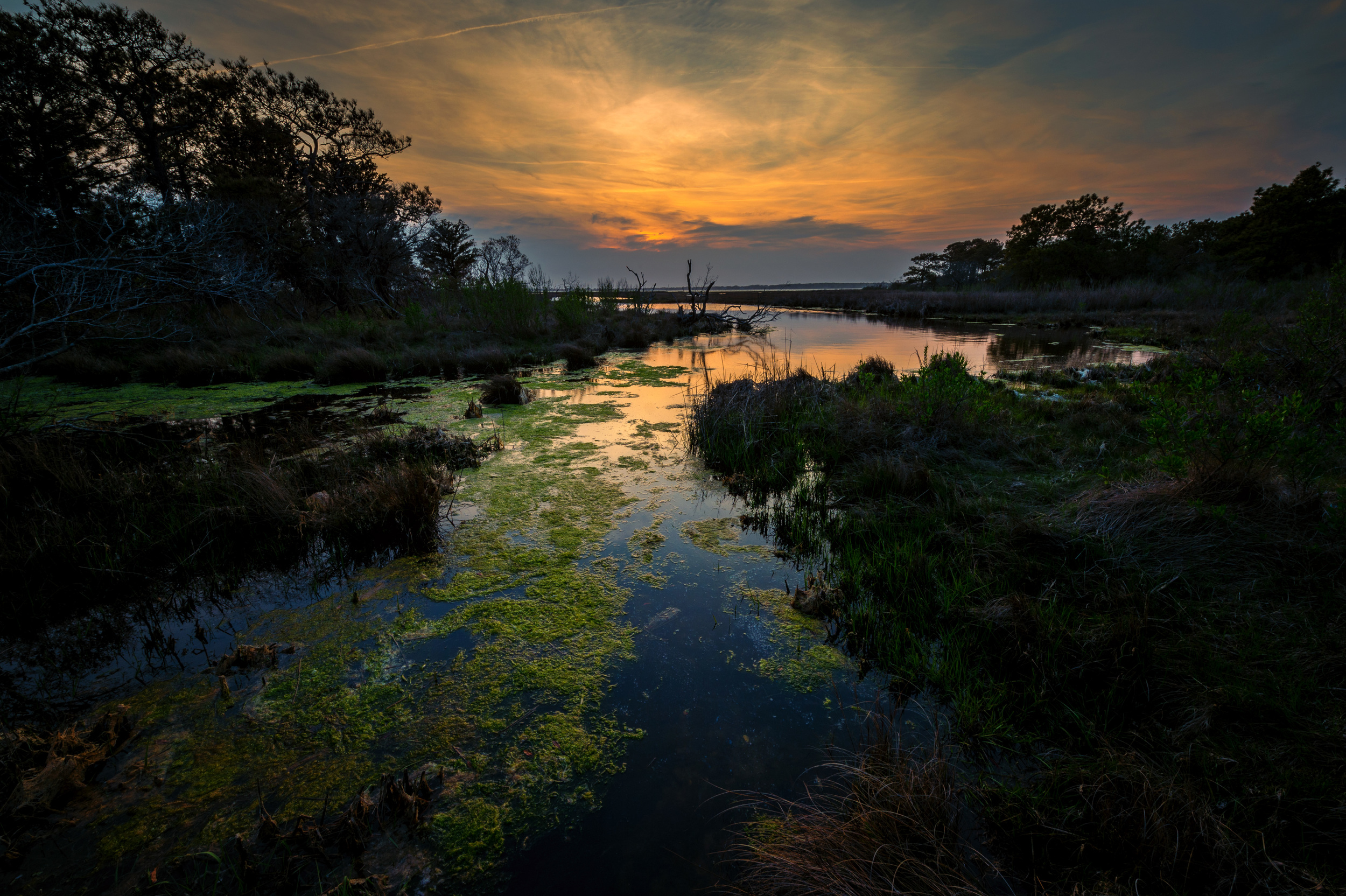 Assateague sunset. 1/10 @ f20, ISO 200. Nikon D4S, 14-24mm at 14mm.