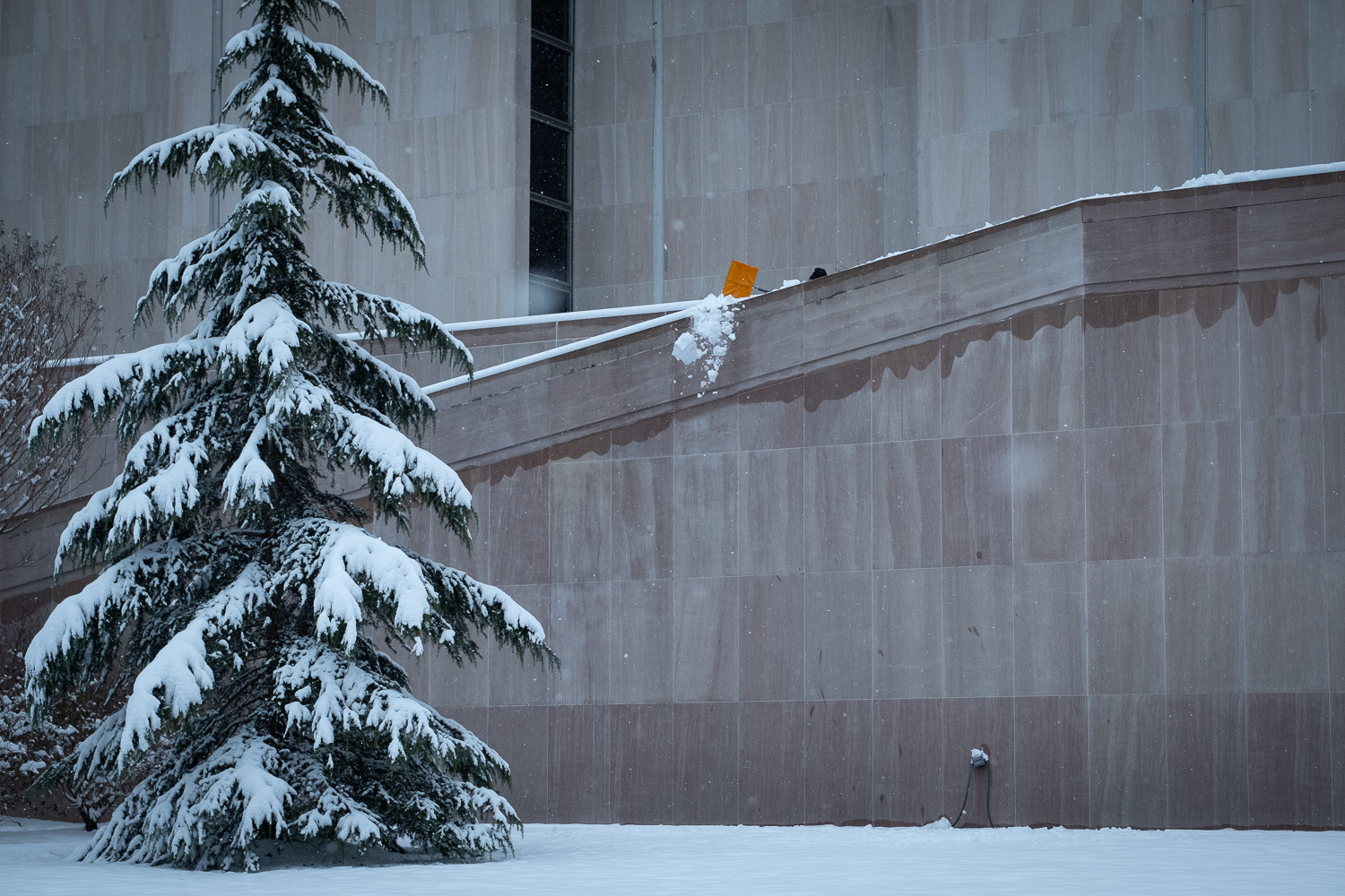 The movement caught my eye, then when I realized what was happening I knew I had my first real photo of the day. For me, the yellow snow shovel makes this image. Fujifilm X-Pro2, 50mm, 1/1500 @ f4, ISO 400.