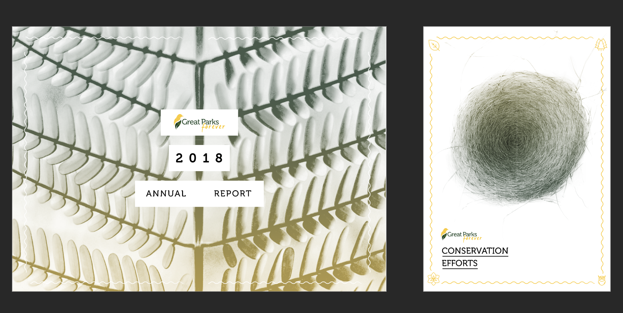 Annual Report Cover and Brochure Cover