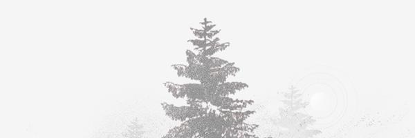 thegrays of snowfall detail