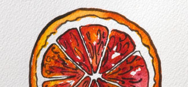 blood orange closeup courtney khail