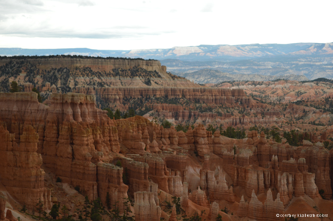 road trip bryce national park _courtneykhail