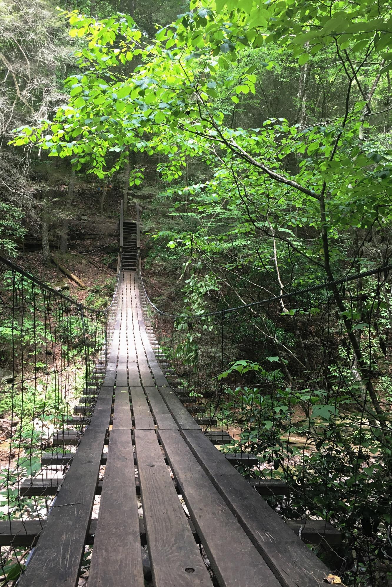 southern artist courtney khail | southern hike inspiration