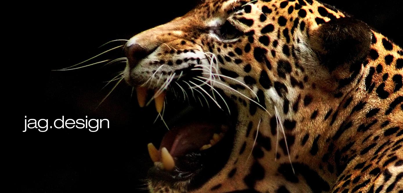 jag_webfbcover_jaguar.jpg