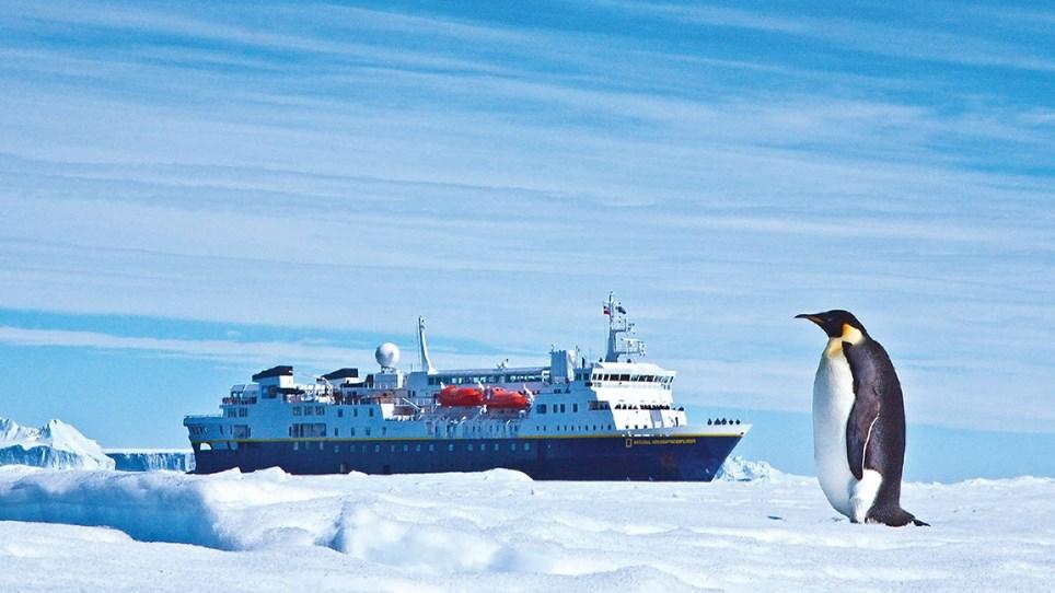 Explorer Penguin Pose.jpg