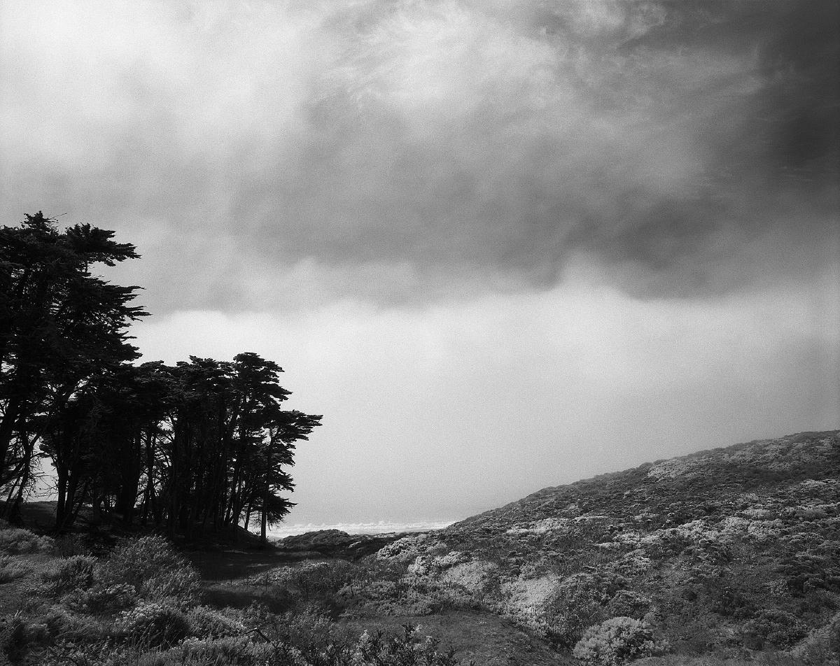 california_08_4