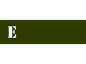 essay_logo.png